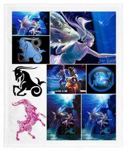 signo zodiacal de capricornio